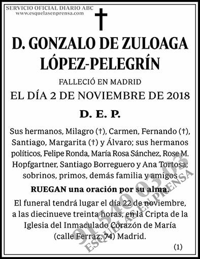 Gonzalo de Zuloaga López-Pelegrín